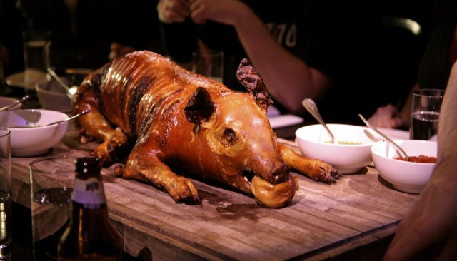 Breslin Pig